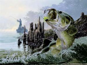 Cool Fishing Games HD Wallpaper 18