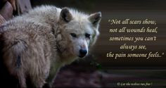 ... wolf wolf quotes tattoo running wolf tattoo lone wolf quotes wolves