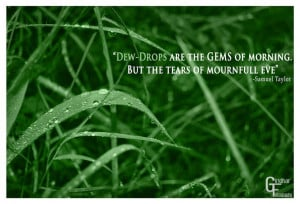 Dew-drops are the gems of the morning. But the tears of mourndfull ...