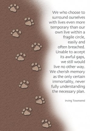 Dog Loss Quotes Like. sympathy card for the