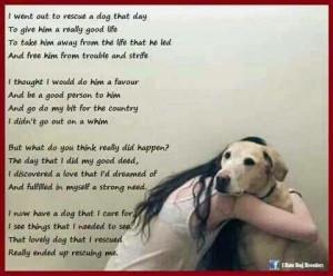 Rescue Dog Poem