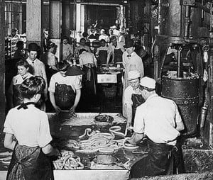 immigrant workers in the meat packing industry At the same time, however, the meat and poultry industry, like others, benefits from immigrant workers' labor 4 the industry should do everything in the domain of its ample power to ensure that.