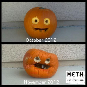 ... put it out in September so it will look like a meth head in October