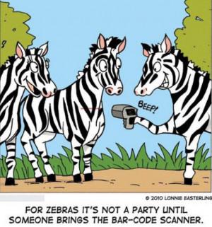 Funny Zebra Pictures – Zebra Party