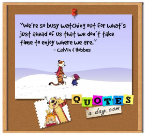 ... Quotes, Life Lessons, Calvin And Hobbes, Comics Strips, True Stories