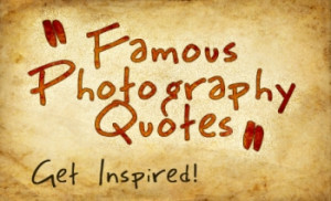 Hand Picked Best Quotes About Photography
