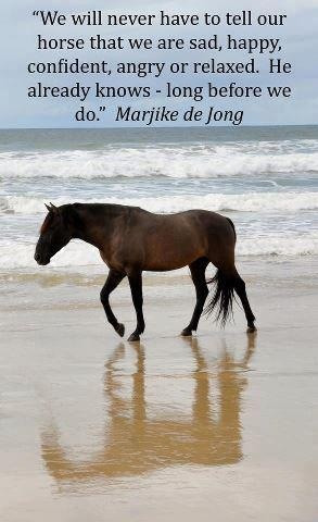 Because your horse always knows just how you feel, and can understand ...