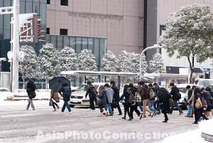 ... icy;-nagoya;-aichi;-meieki;-snowfall;-travel;-destination;-slush