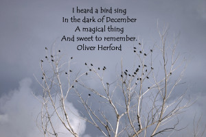 ... Dark Of December A Magical Thing And Sweet To Remember - Birds Quote