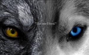 wolf poems and quotes wolf poems and quotes wolf poems and quotes the ...