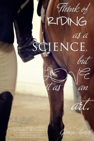 horse quotes   via Tumblr