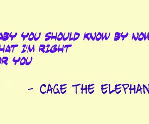 cage the elephant- take it or leave it