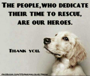 ... rescue and / or have rescued animals - you are forever in my heart