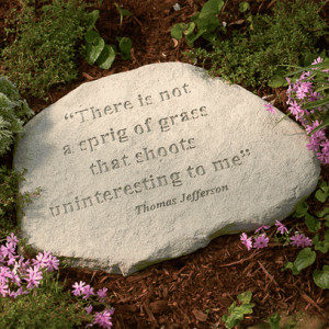 Jefferson Quote Stepping Stone