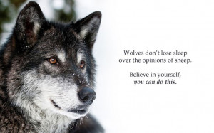 wolf sayings and quotes