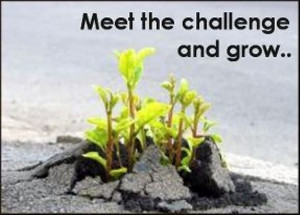 meet the challenge and grow