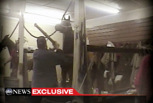 ... trainer Jackie McConnell allegedly abusing Tennessee Walking Horses
