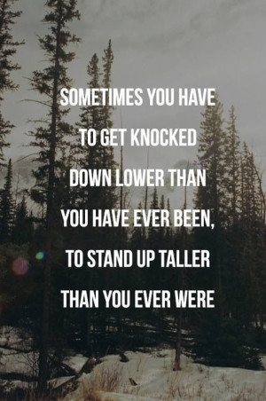 Fall down 7 times. Stand up 8.