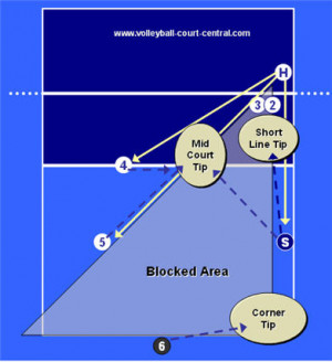 Go Back > Gallery For > Volleyball Quotes For Right Side Hitters