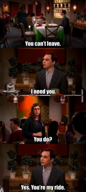 sheldon cooper and amy funny quotes