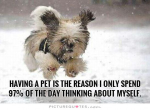 Having a pet is the reason I only spend 97 percent of the day thinking ...
