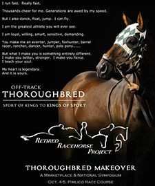 Thoroughbred Makeover (2014) is Bigger, Interactive | Blood-Horse More
