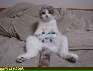 Cat Playing Video Game