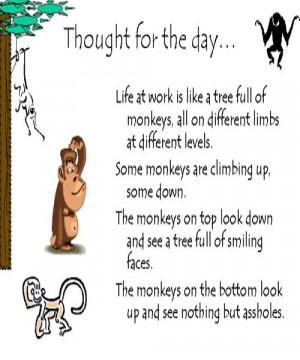 Pictures of Funny Life Quotes And Sayings To Live By