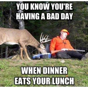 Funny animal picture of a deer eating a sleeping hunter's lunch