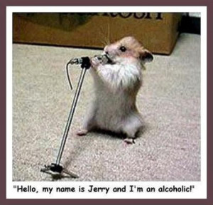 funny rat pics the dapper rat cute rats funny rat photos world biggest ...