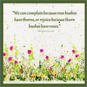 Rose bushes always have thorns