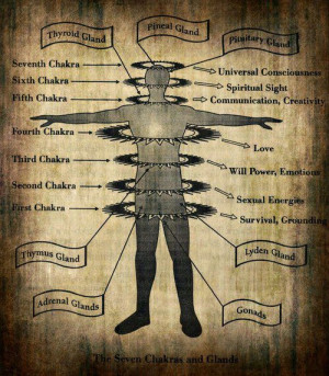 """We have 7 Chakras , and they become """"opened"""" through enlightenment ..."""