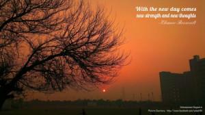 Sunset Sunrise Trees Quotes...