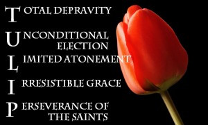 The doctrine of double predestination is the hallmark of John Calvin ...