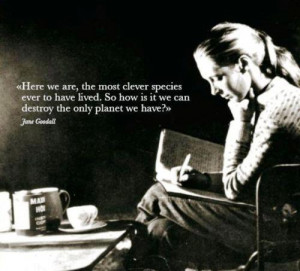 Jane Goodall > Quotes > Quotable Quote
