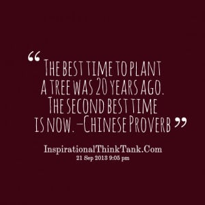 Quotes Picture: the best time to plant a tree was 20 years ago the ...