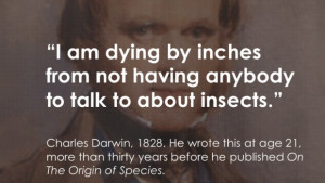 to explain and engage people about insects people who love bugs ...