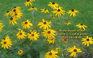 Bible Verse Desktop Wallpapers Free Download