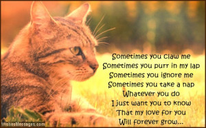 Cute quote about cats as pets