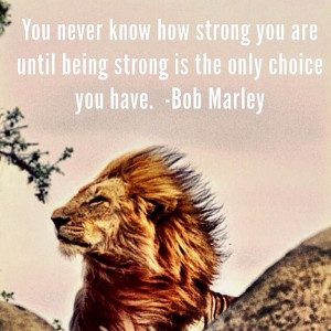 Lion Strong