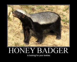 Thread: you think the honey badger cares? ROTFFLMAO!