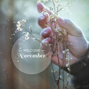 Welcome November.