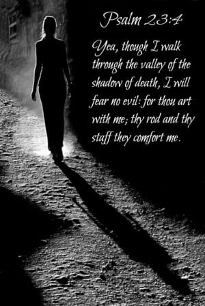 Psalm 23:4 Yea, though I walk through the valley of the shadow of ...