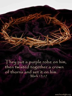 the Roman soldiers placed on Jesus a crown of thorns