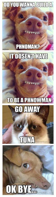 Grumpy Cat Quotes Frozen