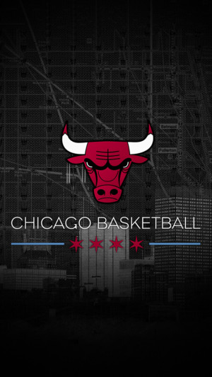 Chicago Bulls Jersey Jordan