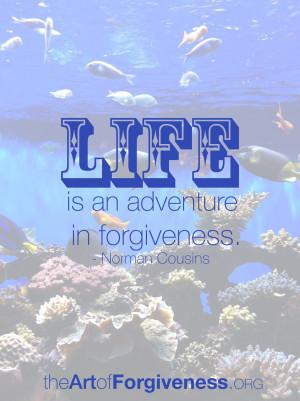 forgive-quote-cousins