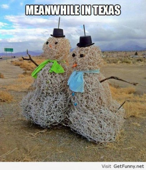 Meanwhile in Texas - Funny Pictures, Funny Quotes, Funny Memes, Funny ...