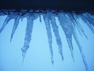 ice storm quotes