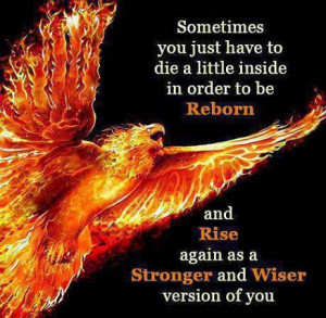 Sometimes you just have to die a little inside in order to be Reborn ...